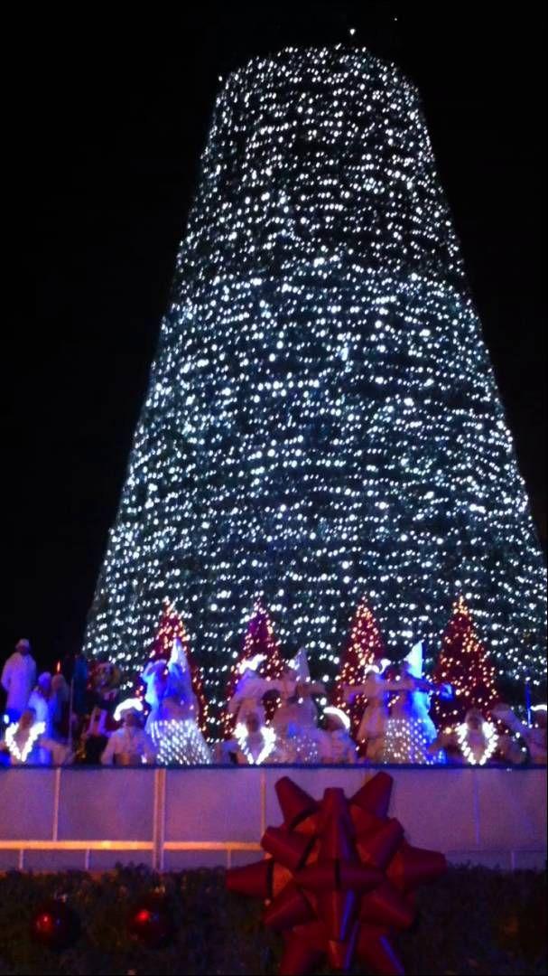 Gardaland Magic Winter 2013. Inaugurazione dell'Albero da 30 metri