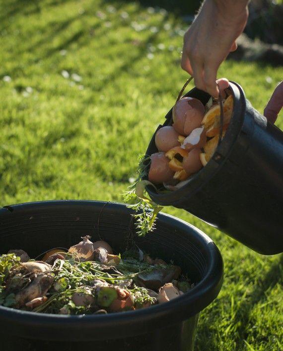 A komposztálás egyszerűbb, mint gondolnád. Minek dobnál ki egy csomó cuccot, ha még hasznodra válhatnak? Spórolsz a szemétszállításon, és még hasznosba is fordítod a szemeted. A komposzt utána csodát tesz a kerttel. Sokan csak a háztartási maradékokkal próbálkoznak, pedig a…