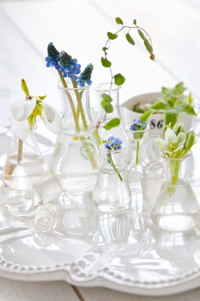 flowers in varying size and shape glass bottles