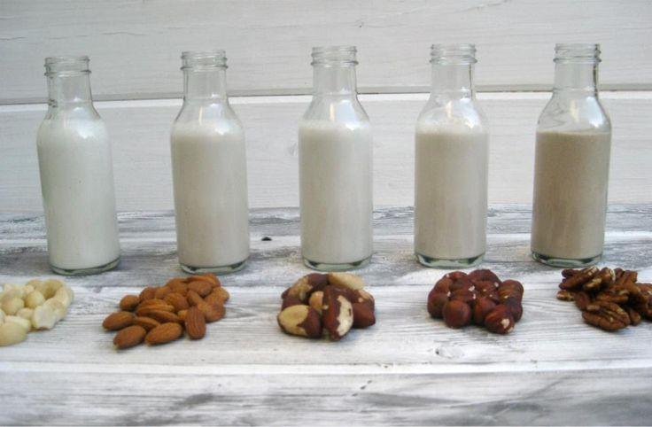 LECHES VEGETALES (Quinoa, Avena, Calabaza, Alpiste, Almendras. Sésamo, Soja, Coco, Girasol, Amaranto, Lino, Nuez, Mijo, Zapallo)