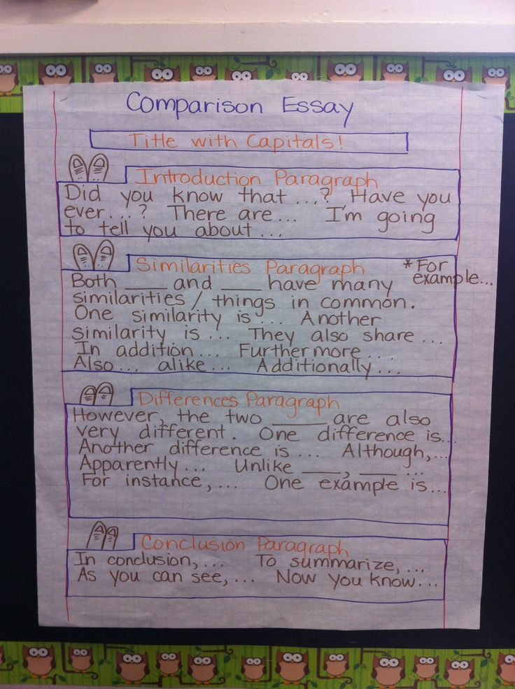 Informative/Explanatory Writing Text Type Comparison Essay
