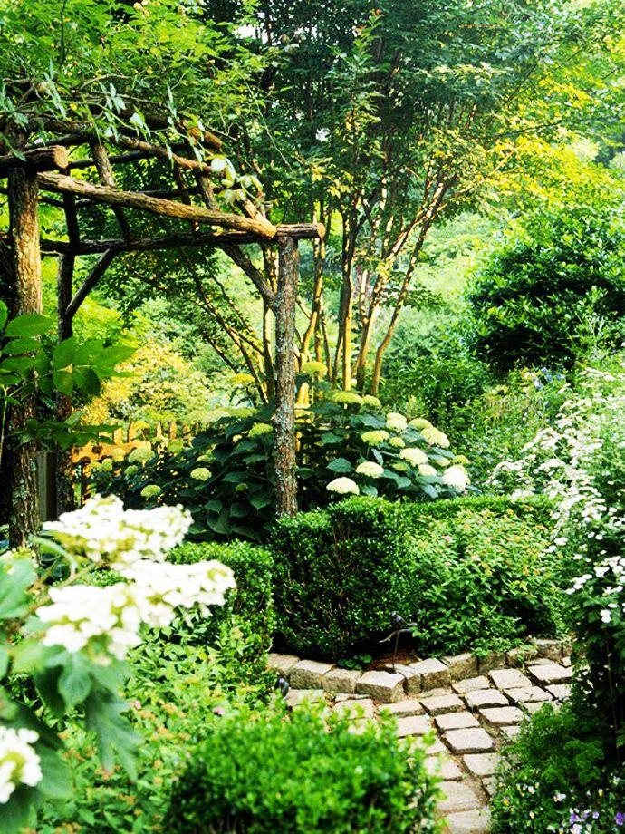 Verwandle deinen Garten jetzt in ein grünes Paradies!