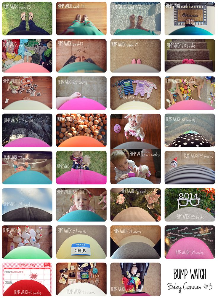 pregnancy journal - bumpwatch maternity photos