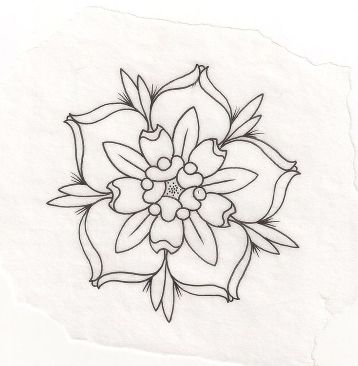 Floral Anchor Tumblr