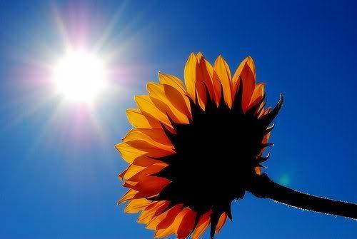 Être animé d'une attitude positive au quotidien, http://optimlifes.over-blog.com/article-10-actions-pour-creer-une-attitude-mentale-positive-105188141.html
