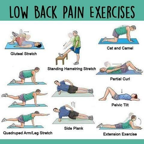 top 65 ideas about sciatic nerve & back pain on pinterest | yoga, Muscles