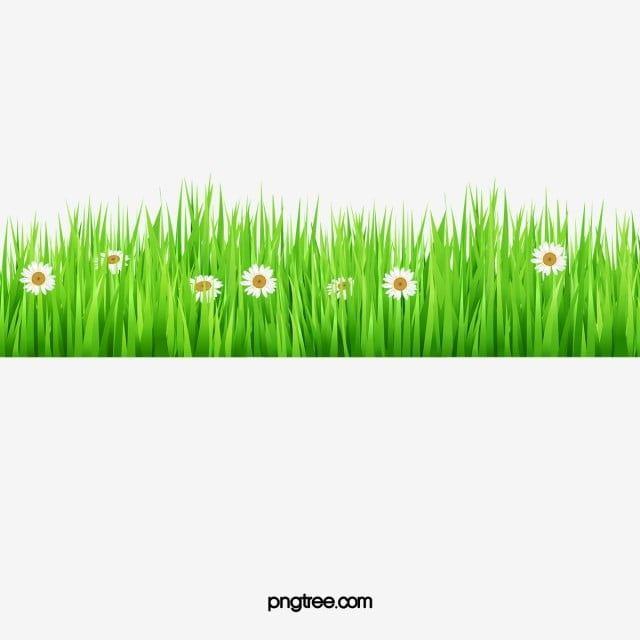 Cartoon Green Grass Cartoon Clipart Grass Clipart Cartoon Png Transparent Clipart Image And Psd File For Free Download Grass Clipart Green Grass Background Light Background Images