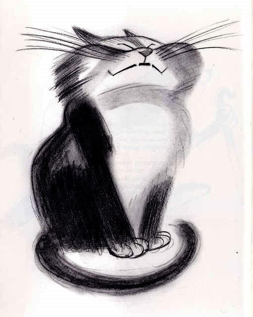 Прикольные коты и кошки рисунки карандашом