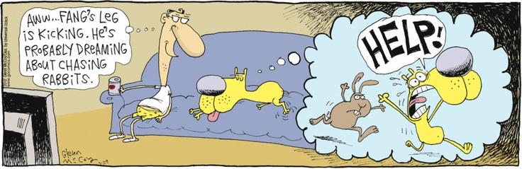The Duplex: When doggies #dream #GoComics #dogs #comics: Dogs Comic, Gocom Dogs, Dreams Gocom, Doggies Dreams
