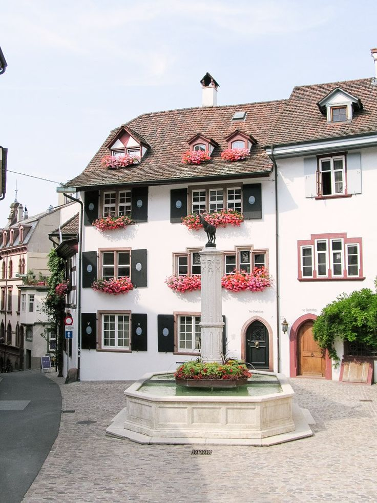 Basel Travel Diary // Basel, Switzerland: animals, views, and unending charm