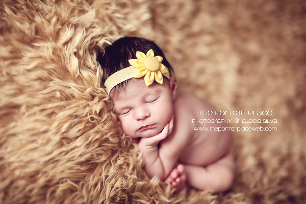 Love.  Alecia Silva (The Portrait Place)Photos Ideas, Baby Photographers, Alecia Silva, Newborns Baby, Portraits Places, Baby Fotos, Seattle Newborns, Newborns Photography, Photography Ideas