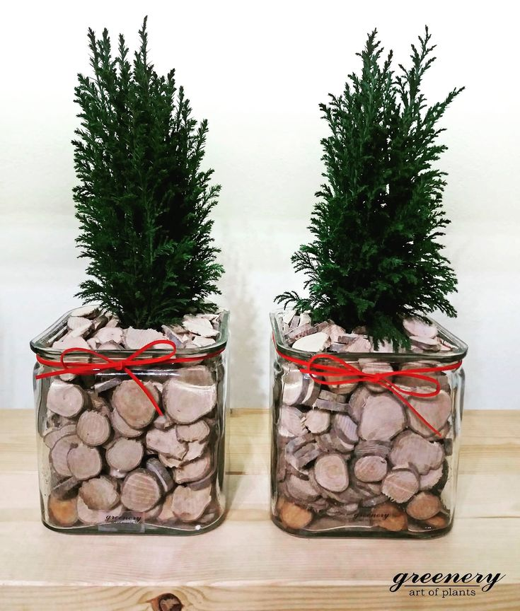 Wood is a must for Christmas! #greenery #ellwood #christmas #xmas #gifts #greece