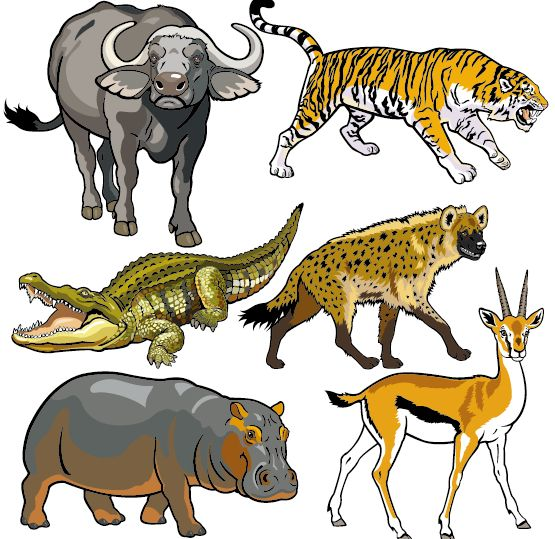 Vector set of wild animals design graphic 06 free