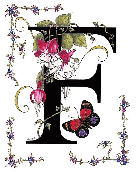 Fuschia and Butterfly by Constance Widen