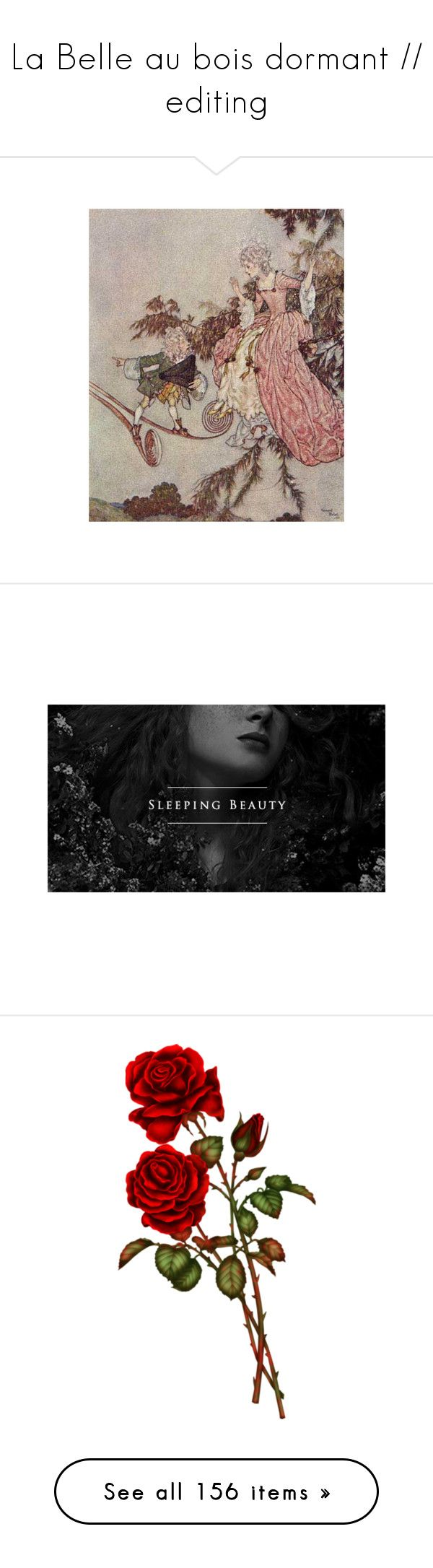 """""""La Belle au bois dormant // editing"""" by drownedinmoonlight ❤ liked on Polyvore featuring backgrounds, pictures, sleeping beauty, art, illustration, fillers, flowers, red, rose and castle"""