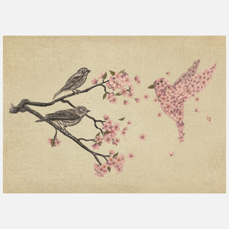 Blossom Bird. Would make a cool tattoo.