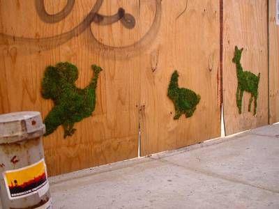 Мох в саду. Ландшафтный дизайн.. Обсуждение на LiveInternet - Российский Сервис Онлайн-Дневников