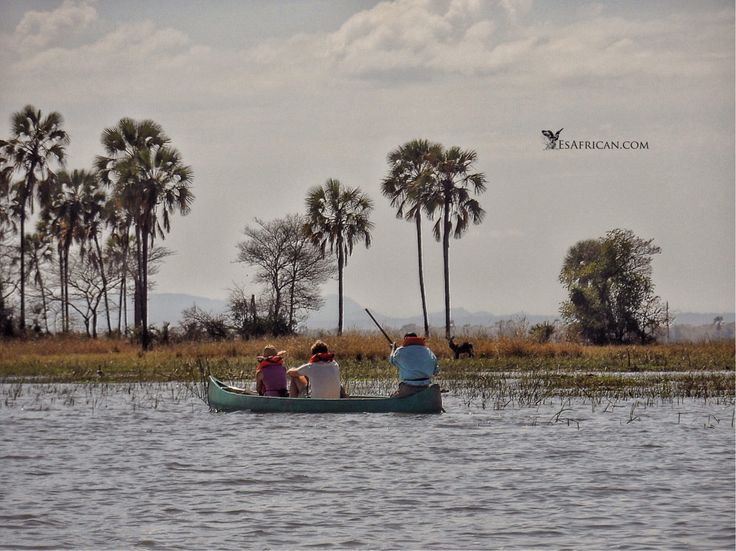 #BushmansBaobabs #CanoeSafari #Liwonde #Malawi See our blog post on how to enjoy this place. If you so choose, then enter the world of the wild, but remember, it is the wild...