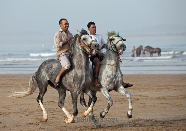 Fantasia on the beach in Essaouira during the music festival, The Gnaoua