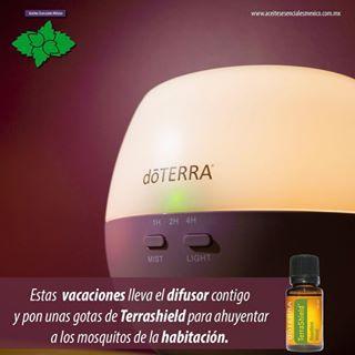 @aceitesesenciales_yucatan Tienes tos?? Prepara miel con tus aceites esenciales dōTERRA, notarás el cambio y lo mejor es que la puede consumir tod