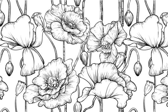 Black and White Illustrated Flowers Wallpaper Wall Mural | MuralsWallpaper.co.uk