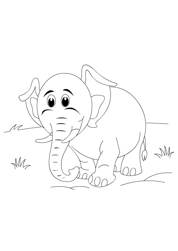 75 best Animals Coloring Pages images on Pinterest | Coloring books ...