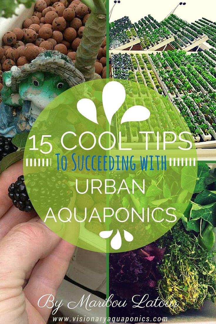 124 best akuaponik images on pinterest hydroponic gardening