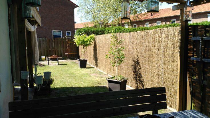 Bamboepluimmatten zie je weinig in de tuinen. De oorzaak is de onbekendheid. Kom ze maar eens in het echt bekijken!
