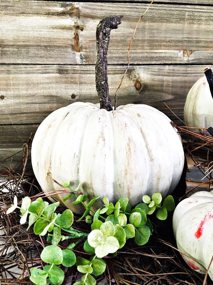 Have you ever painted pumpkins? Yesterday I spent the day crafting Fall…