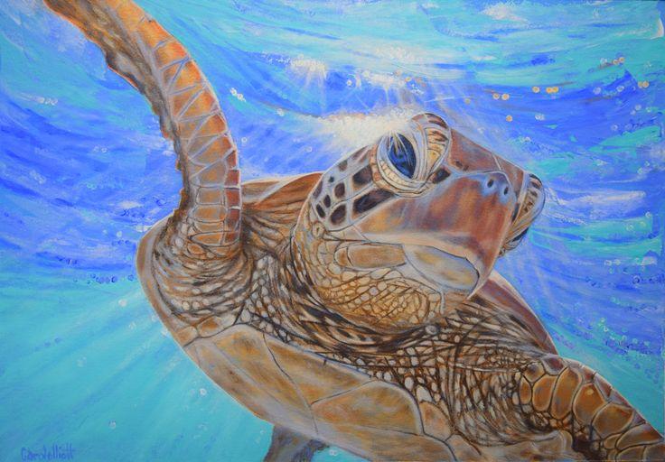 Harry the Turtle by Carole Elliott - supporting turtle rescue and rehabilitation #turtle #art #painting #iloveturtles #atelierinteractives #australianart #originalart