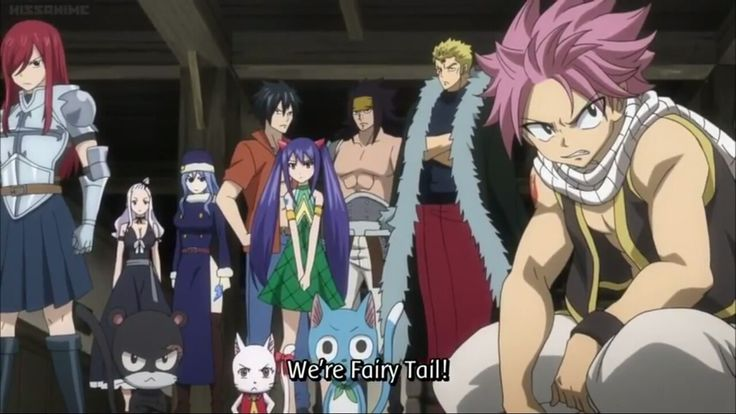 We're Fairy Tail!, text, quote, Fairy Tail characters, guild; Fairy Tail
