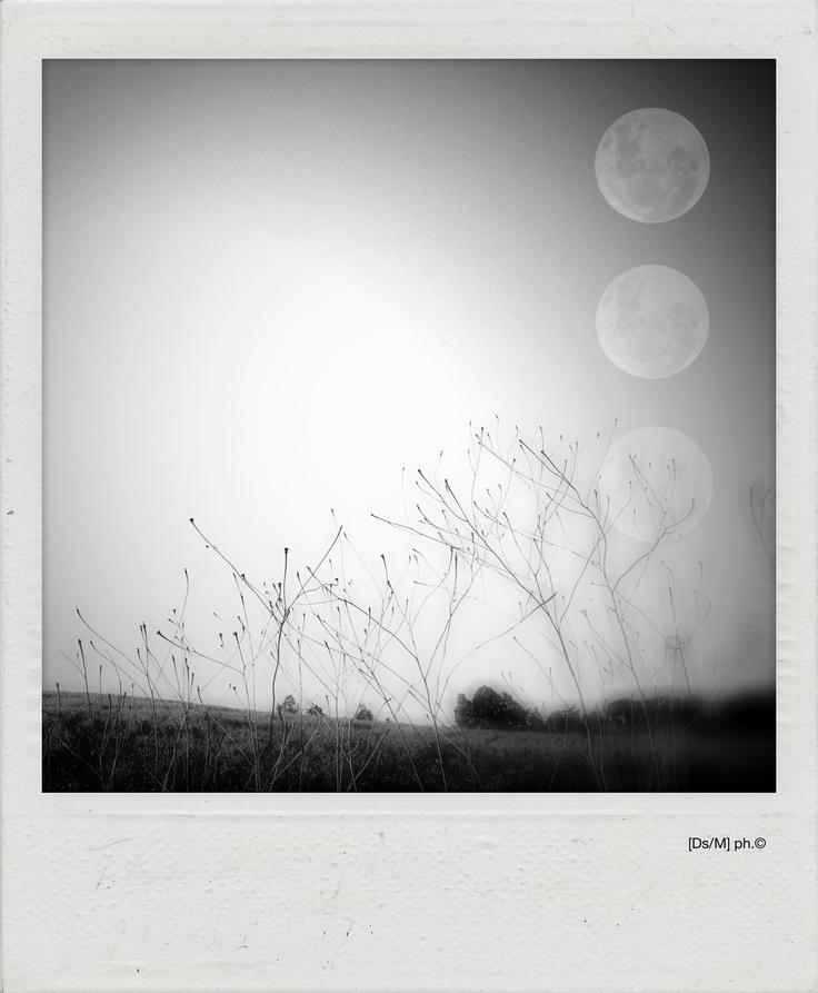 IL MIO CIELO NONCOMUNE La prigionia del corpo è vincolata al luogo comune, che non lo è, tu, io, realtà alterata attraverso le tue ciglia nere, vivo, forse, assecondato dall'aria che scorrendo ruba le tue lune sistemandole nel mio cielo, nelle aperture delle mie labbra, in cambio della redenzione.  Amen.   http://paralleluniverseinpolaroid.wordpress.com