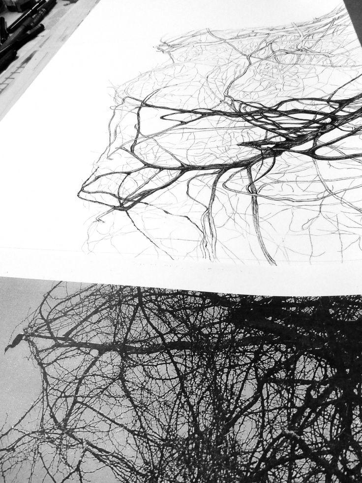 Dibujo a tinta china s/ papel Zerkall
