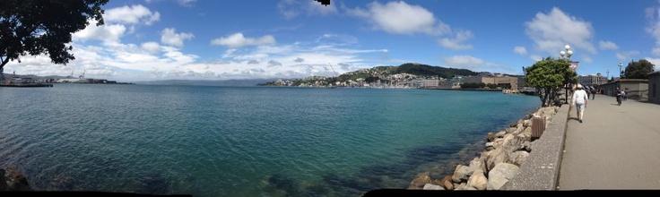 Spring Sunday in Wellington