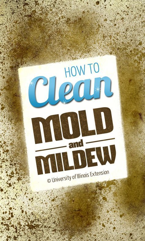 How to Clean Mold & Mildew - mold & mildew take special care. I haven't had time to read this pin - so decide if this is healthy or not & please feel free to leave an educational comment. We're listening.