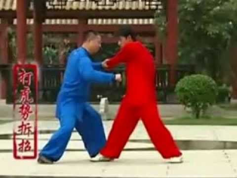Yang Style Tai Chi Applications Fighting Techniques - YouTube