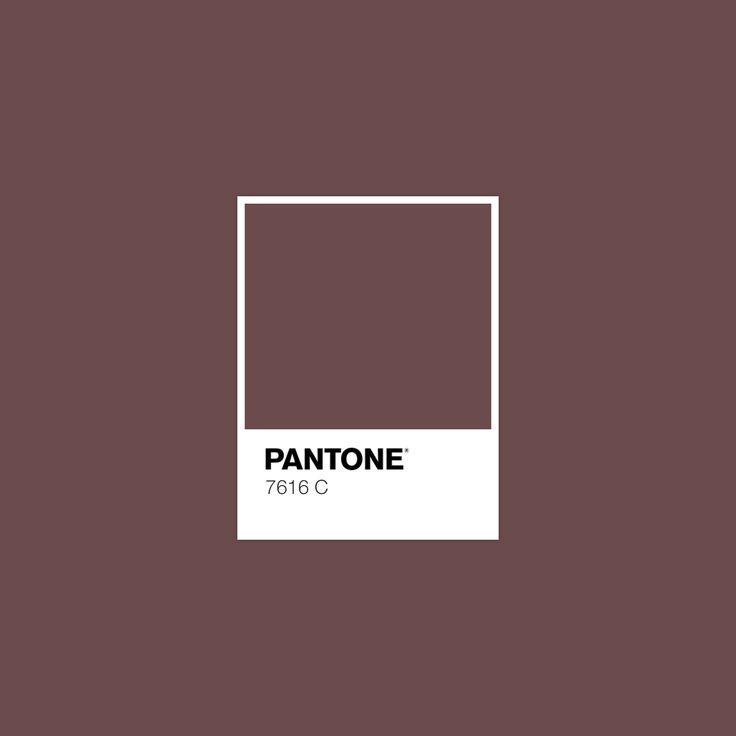 27 best fpd project images on pinterest pantone color color palettes and color pallets. Black Bedroom Furniture Sets. Home Design Ideas