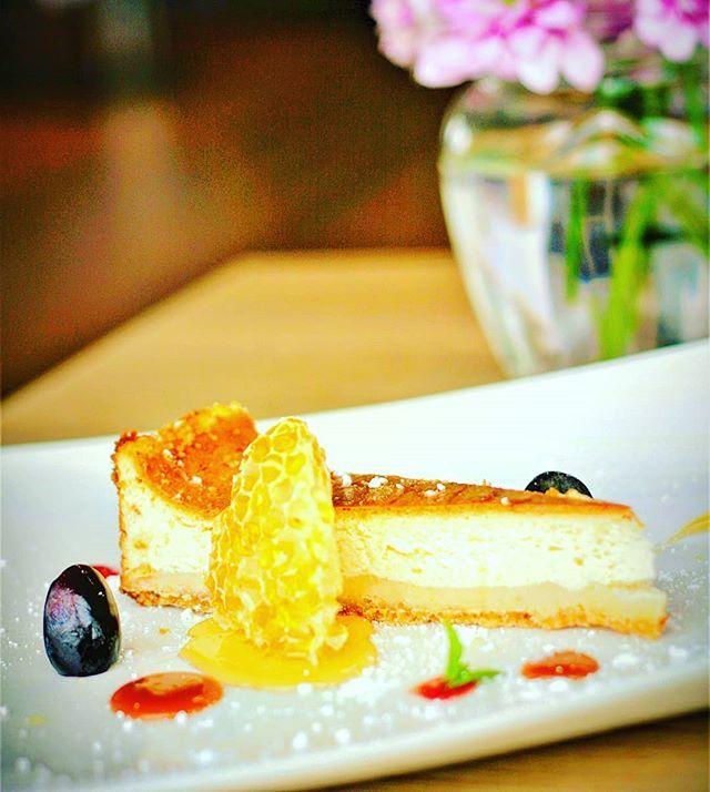 Sernik Cheesecake Dessert Sweet Sun Restaurant Honey Honeycomb Cheesecake Desserts Food