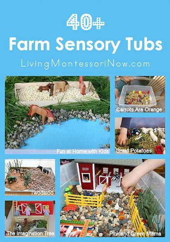 Montessori Monday – 40+ Farm Sensory Tubs. Today, I want to share some great ideas for farm sensory tubs. It's fascinating to see the huge variety of creative tubs along with a wide variety of base materials.