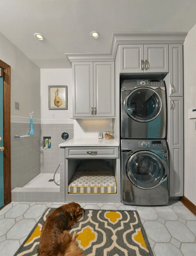 Dog-Friendly Remodeling Ideas in Increasing Order of Canine Special shower to bathe muddy dogs Craziness | Apartment Therapy