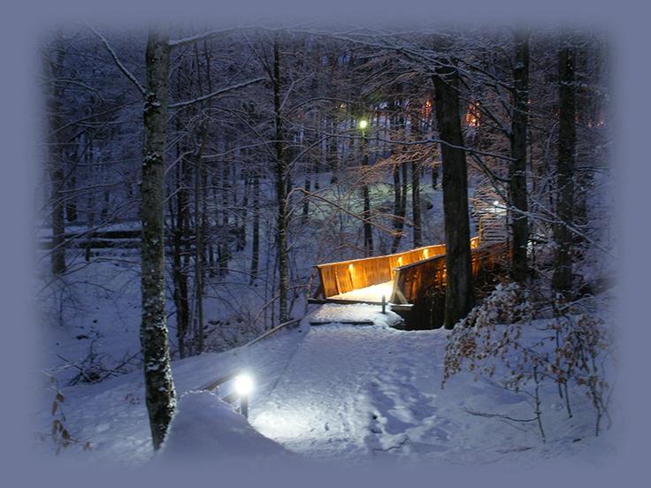 winter fairytale in Transylvania (at Sovata, Mures #Transylvania)