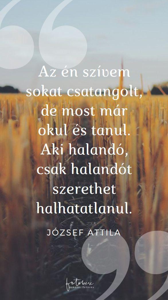 esküvői idézetek magyar költőktől Esküvői idézetek   Esküvői fotós, Esküvői fotózás, fotobese