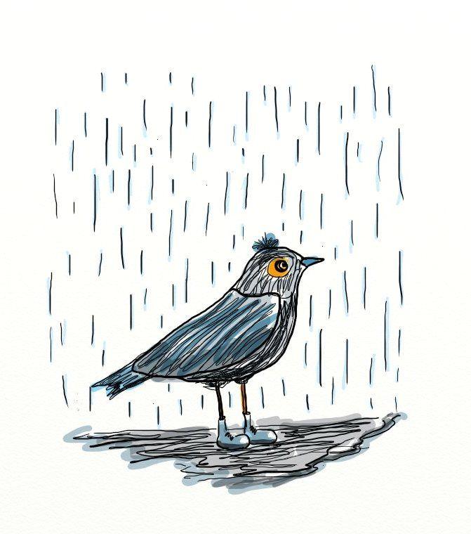 #Kış geldi. #kuş