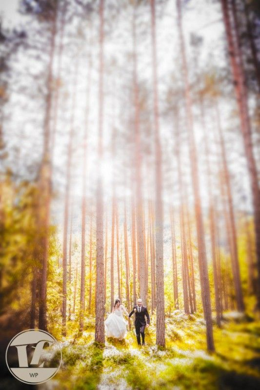 WEDDING IN TRENTINO ALTO ADIGE  #wedding #italy #summer #mountain #photoshoot #destinationwedding #wood