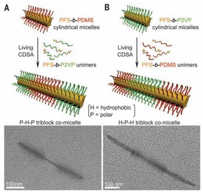 (Phys.org)—A team of researchers working at the University of Bristol in the U.K. has found a way to build supermicelles from simple polymers. In their paper published in the journal Science, the team describes their 3-step process and the types of supermicells they were able to build. In-Hwan Lee, ...