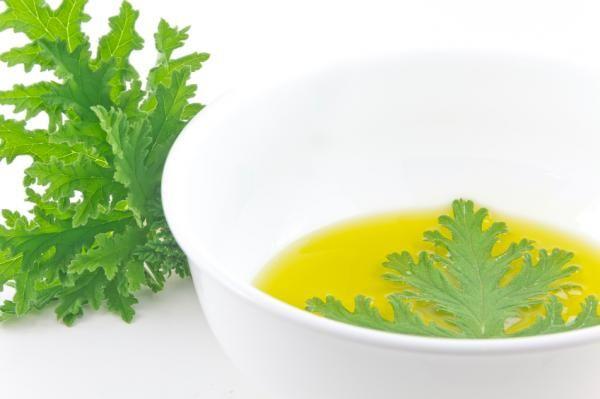 Cómo hacer aceite de citronela