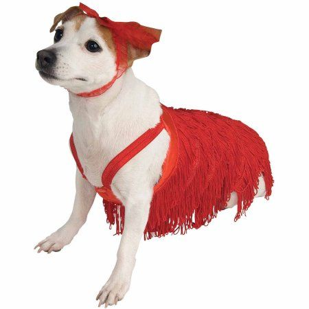 Flapper Halloween Pet Costume (Multiple Sizes Available), Multicolor