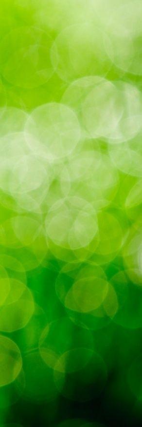 #green www.DreamWrapper.com