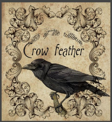 """""""Crow Feather"""""""