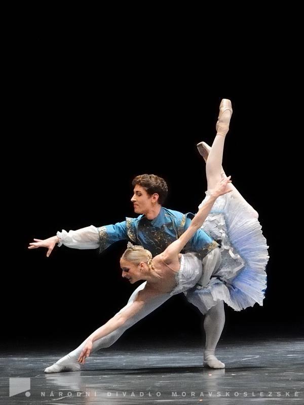 balet snd pyzhov - Hľadať Googlom